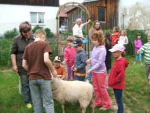 Kinder mit Schaf auf Erlebnishof